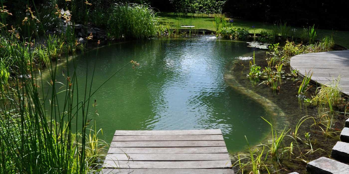 Zwemvijvers van ecoworks ontdek ons for Wat kost een zwemvijver aanleggen