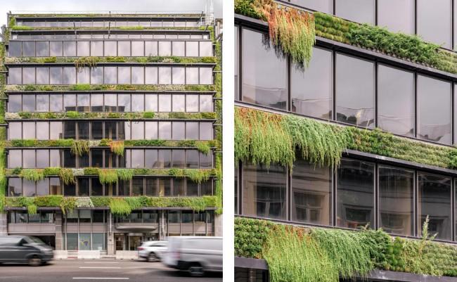 groengevel hartje Brussel