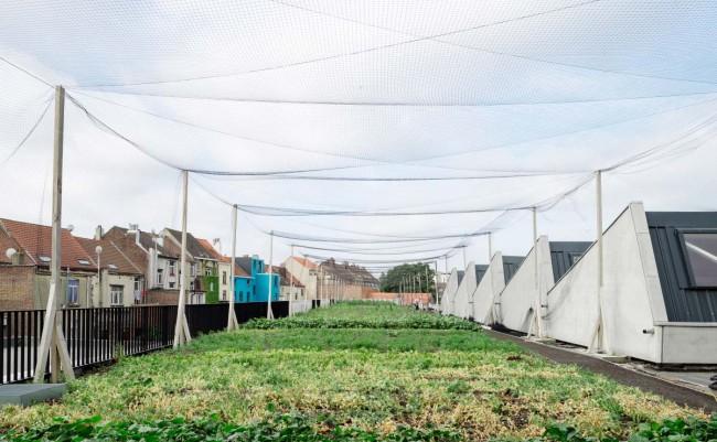 stadslandbouw Abattoir te Anderlecht