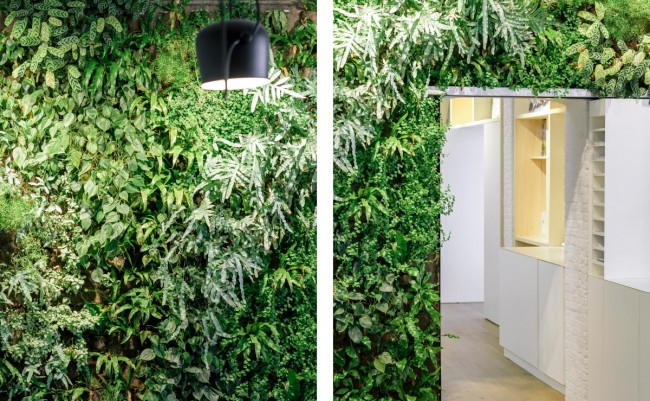 groengevel Omgeving Architecten