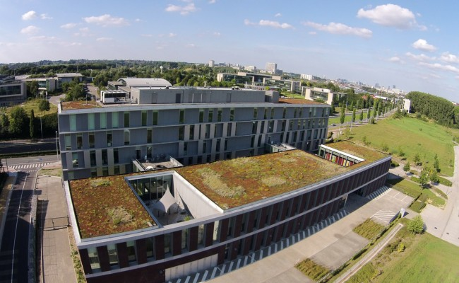 Extensive greenroof - M-Team Anderlecht