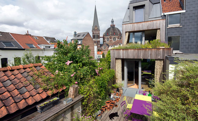 intensive greenroof - Ukkel